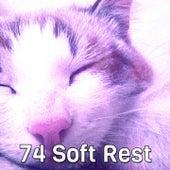 74 Soft Rest by Deep Sleep Music Academy