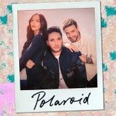 Polaroid de Jonas Blue, Liam Payne & Lennon Stella