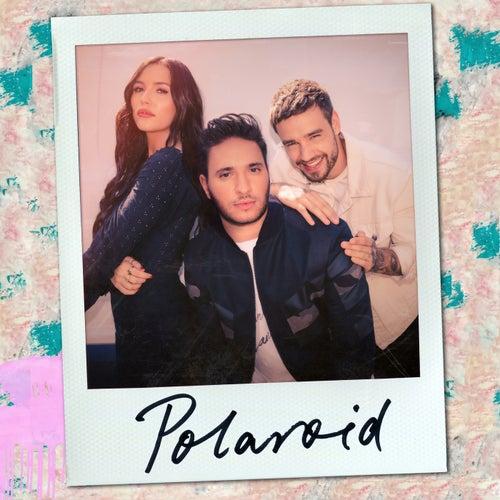 Polaroid von Jonas Blue, Liam Payne & Lennon Stella