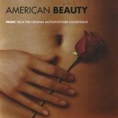 American Beauty (Original Motion Picture Soundtrack) von Various Artists