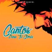 Cantos para Tu Gloria by Various Artists