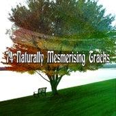 74 Naturally Mesmerising Tracks von Entspannungsmusik