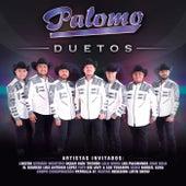 Duetos van Palomo