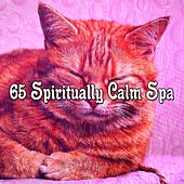 65 Spiritually Calm Spa von Rockabye Lullaby