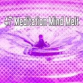 47 Meditation Mind Melt von Massage Therapy Music