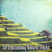 59 Outstanding Natural Tracks von Lullabies for Deep Meditation