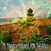 75 Tranquil Sounds For The Soul von Entspannungsmusik