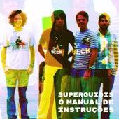 O Manual de Instruções (Tributo Ao Superguidis) de Various Artists