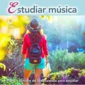 Estudiar música: Piano y sonidos de la naturaleza para estudiar de Musica Para Leer
