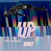 Up von Bino