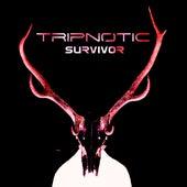 Survivor de Tripnotic