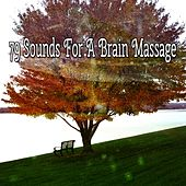 79 Sounds For A Brain Massage by Classical Study Music (1)