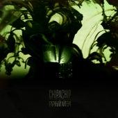 Рарный айтем by ChipaChip