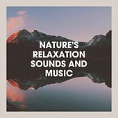 Nature's Relaxation Sounds and Music de Various Artists