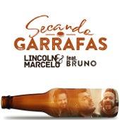 Secando Garrafas de Lincoln e Marcelo