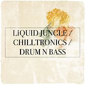 Liquid Jungle / Chilltronics / Drum N Bass by Various Artists