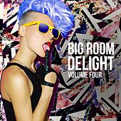 Big Room Delight, Vol. 4 de Various Artists