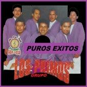 Puros exitos by Grupo Los Primos