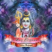 Goa Trance, Vol. 38 de Various Artists