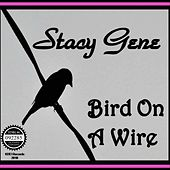 Bird on a Wire by Stacy Gene