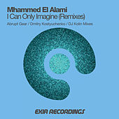 I Can Only Imagine (Remixes) by Mhammed El Alami