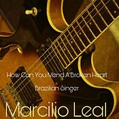 How Can You Mend a Broken Heart by Marcilio Leal