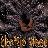You Got It All by Electric Wood