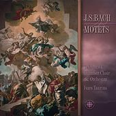 Bach: Motets Bwv 225-230 de Ivars Taurins