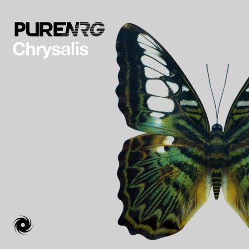 Chrysalis by PureNRG