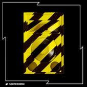 Flashover ADE Flash von Various Artists
