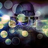 Flipp Tha Script by Dj tomsten