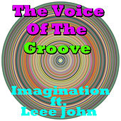 The Voice Of The Groove de Imagination