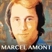 Les bleuets d'azur de Marcel Amont