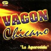 La Aparecida by Vagon Chicano