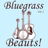 Bluegrass Beauts!, Vol. 2 von Various Artists