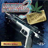 Puros Corridos Bien Empolvados, Vol. 3 de Various Artists