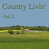 Country Livin' Vol. 3 von Various Artists
