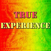 True Experience de Various Artists