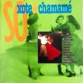 Só Xote e Chamamé, Vol. 1 by Various Artists