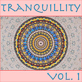 Tranquillity, Vol. 1 by Spirit