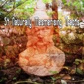 54 Naturally Mesmerising Tracks von Entspannungsmusik