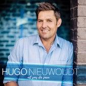 Net Soos Die Sneeu by Hugo Nieuwoudt