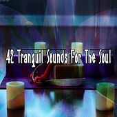 42 Tranquil Sounds For The Soul von Entspannungsmusik