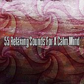 55 Relaxing Sounds For A Calm Mind von Massage Therapy Music