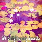 54 Enlightening Sounds de Meditación Música Ambiente