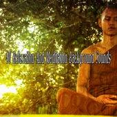 40 Relaxation And Meditation Background Sounds de Meditação e Espiritualidade Musica Academia
