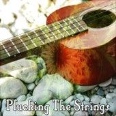 Plucking The Strings de Instrumental