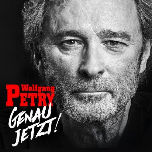 Wo sind denn all die Helden von Wolfgang Petry