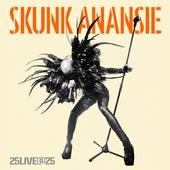 25live@25 von Skunk Anansie