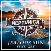 Jealous Sun von Neptunica